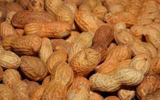 БЖУ арахиса