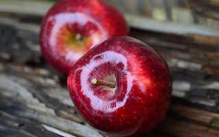 Гликемический индекс яблока