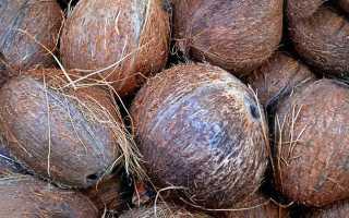 БЖУ кокоса