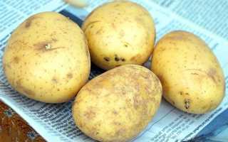 Инсулиновый индекс картофеля