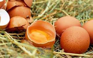 Инсулиновый индекс куриного яйца