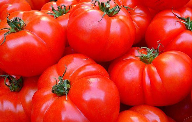 ii-pomidorov