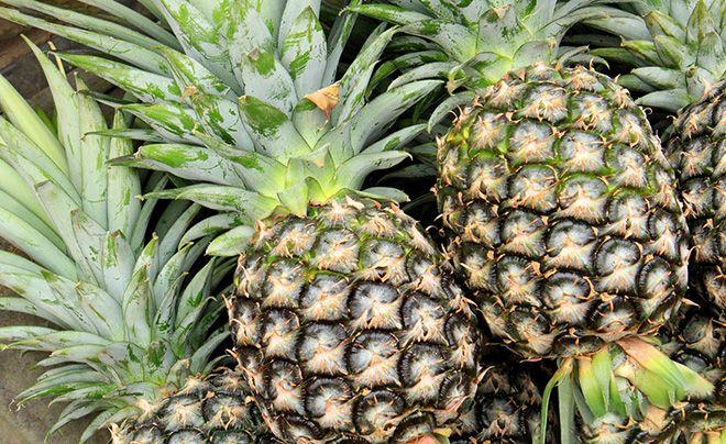 sushenogo-ananasa