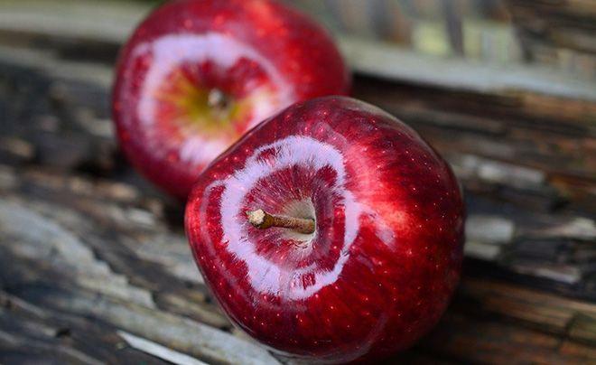 frukt-okazyvaet