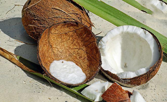 gi-kokosa