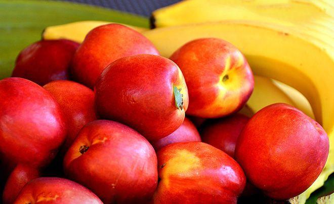 bzhu-fruktov