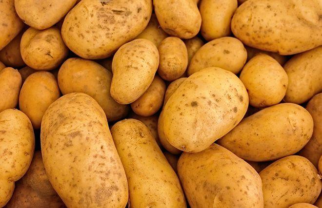 kartofelnyj-krahmal